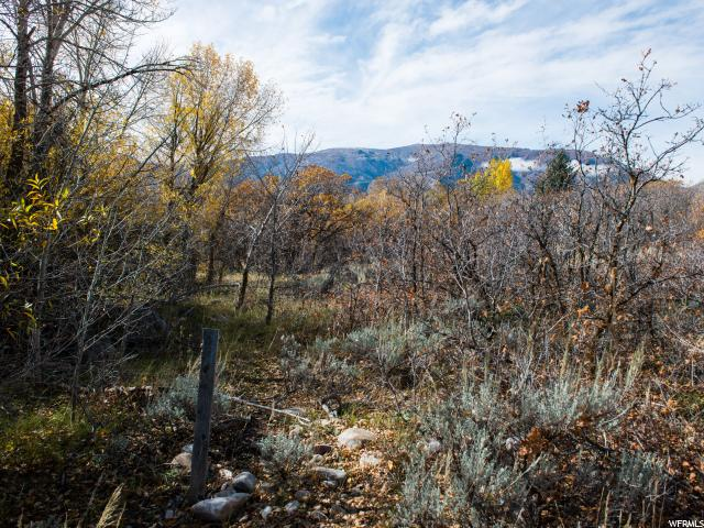 Additional photo for property listing at 4243 N POWDER MOUNTAIN Road  Eden, Utah 84310 United States
