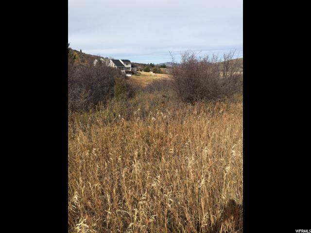 Additional photo for property listing at 13 CITATION Court 13 CITATION Court Georgetown, Idaho 83239 United States