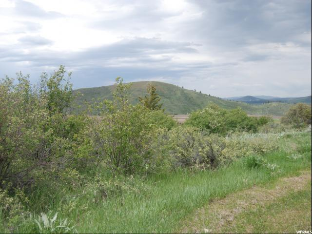 Land for Sale at 13 CITATION Court 13 CITATION Court Georgetown, Idaho 83239 United States