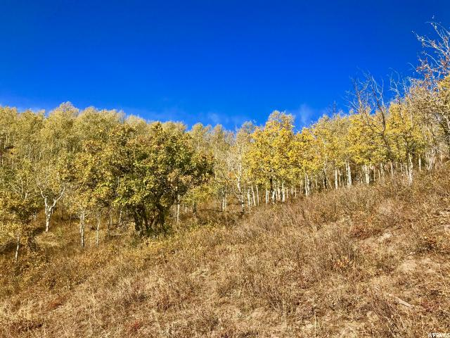 Additional photo for property listing at 2484 S FOREST MEADOW Road 2484 S FOREST MEADOW Road Wanship, Utah 84017 United States