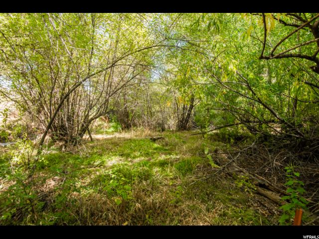 Additional photo for property listing at 7028 W WOOD DUCK Lane  Highland, Utah 84003 United States