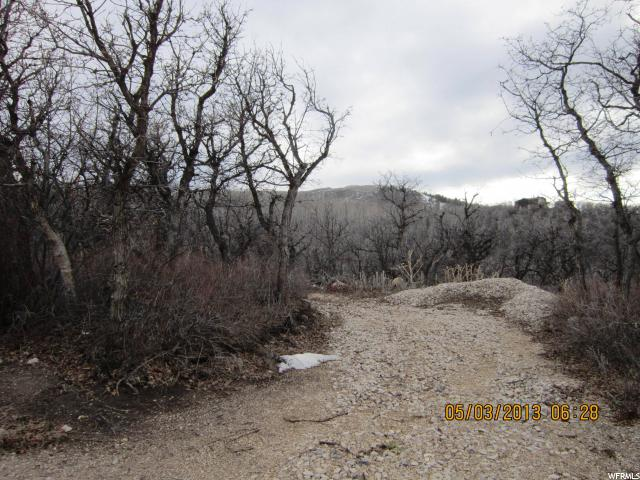 Land for Sale at 2638 S RED WILLOW 2638 S RED WILLOW Heber City, Utah 84032 United States