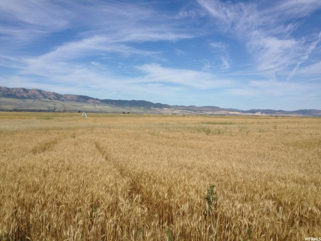 Land for Sale at 23800 S HWY 91 Downey, Idaho 83234 United States