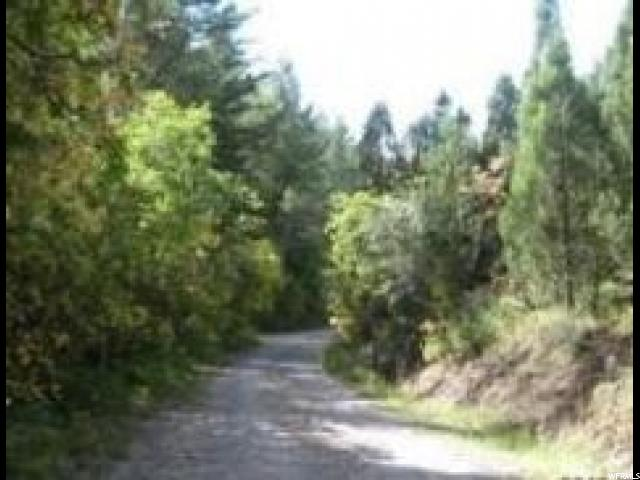 Additional photo for property listing at Address Not Available  Grace, Idaho 83241 United States