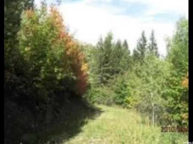 Land for Sale at Address Not Available Grace, Idaho 83241 United States