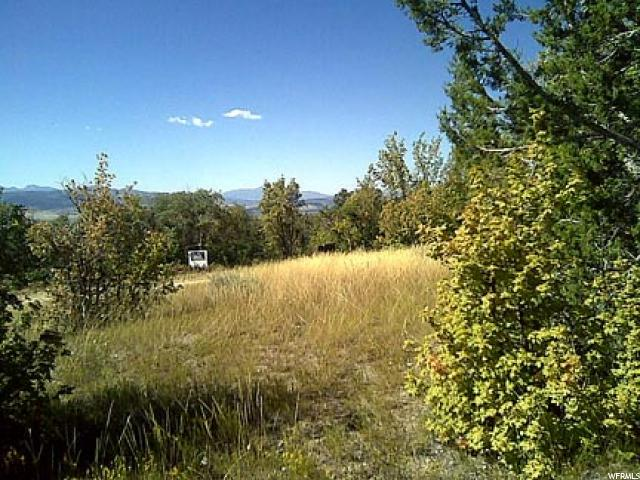 696 W LODGE POLE DR Fairview, UT 84629 - MLS #: 1418450