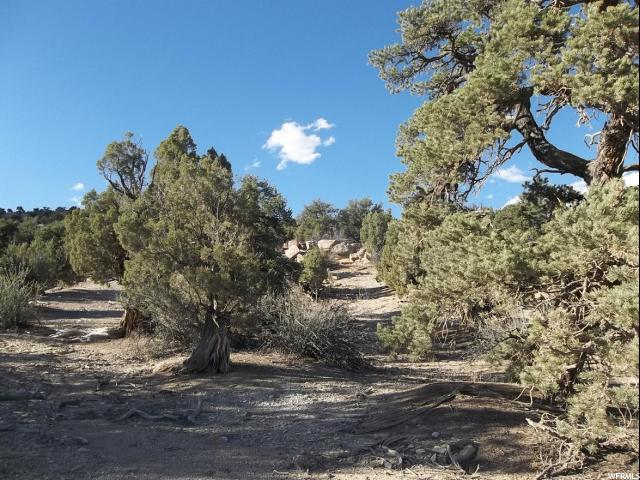 Additional photo for property listing at 75 E RAINBOW Road 75 E RAINBOW Road Duchesne, Utah 84021 Estados Unidos
