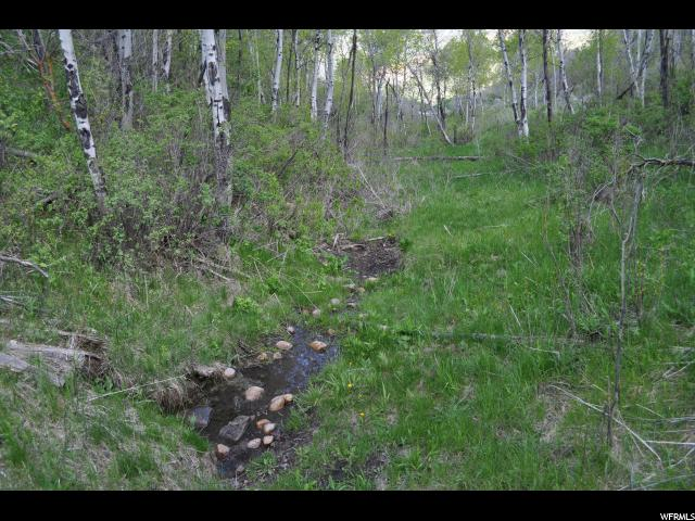 Additional photo for property listing at 97 97 ECHO CREEK RANCHES RNCH #9  Echo, Юта 84024 Соединенные Штаты