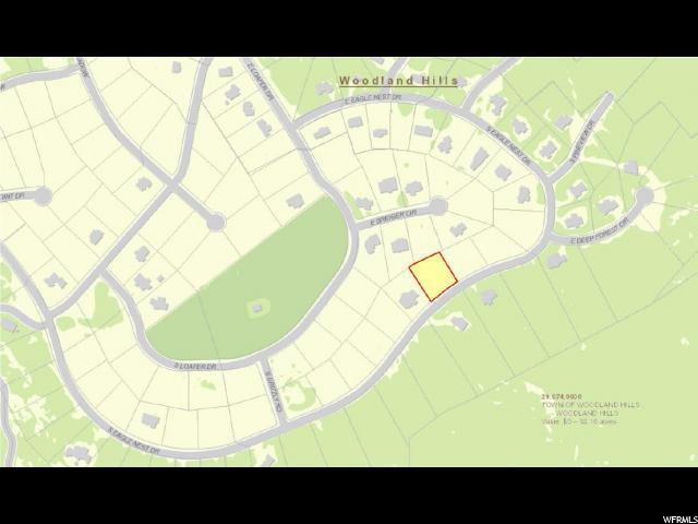 1125 S EAGLE NEST DR Woodland Hills, UT 84653 - MLS #: 1421195