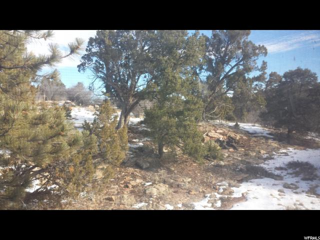 160 S BRUSHY TERRACE RD Monticello, UT 84535 - MLS #: 1423929