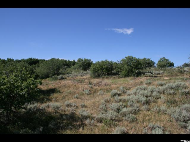 Additional photo for property listing at 1655 RED HAWK Trail 1655 RED HAWK Trail Park City, Юта 84098 Соединенные Штаты