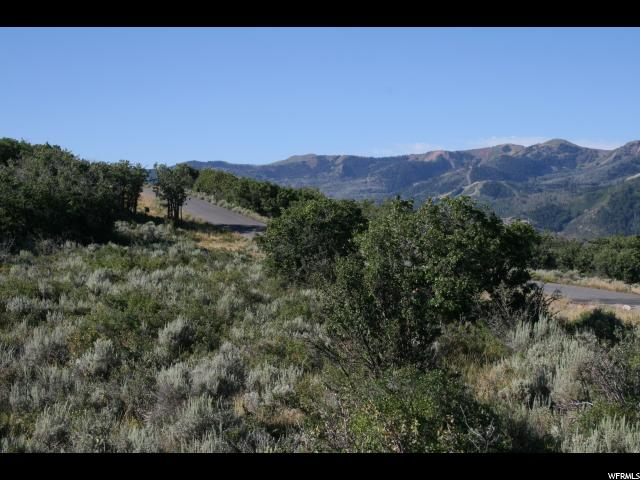 Additional photo for property listing at 1695 RED HAWK Trail 1695 RED HAWK Trail Park City, Utah 84098 États-Unis