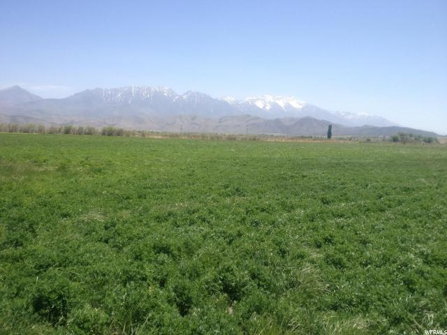 Land for Sale at 11800 W 14400 S Goshen, Utah 84633 United States