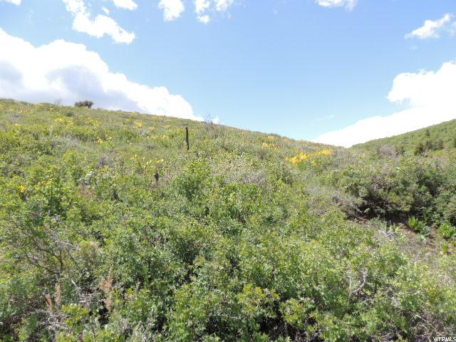 Additional photo for property listing at 1240 N SCULPIN LOOP 1240 N SCULPIN LOOP 花园城, 犹他州 84028 美国
