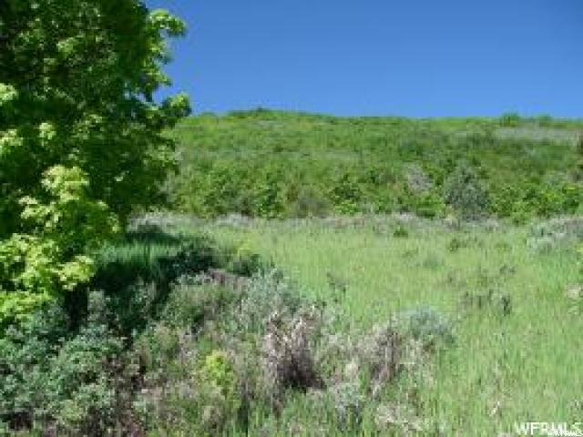 1381 N SCULPIN LOOP Swan Creek, UT 84028 - MLS #: 1428174