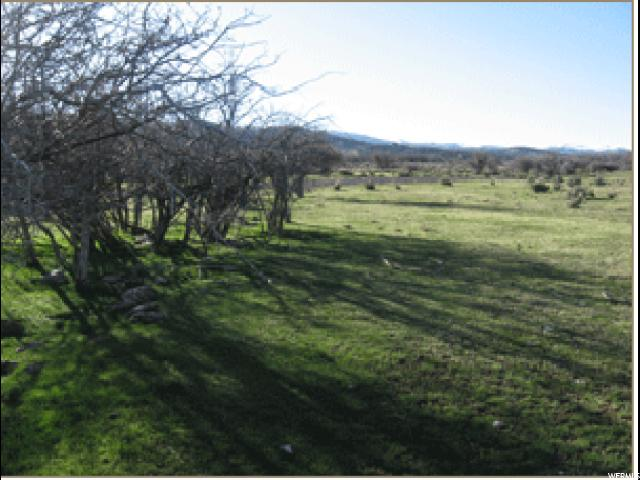 Land for Sale at 23161 N 12006 E 23161 N 12006 E Fairview, Utah 84629 United States