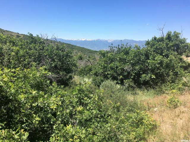 Additional photo for property listing at 2280 S WESTVIEW Drive  Heber City, Utah 84032 Estados Unidos