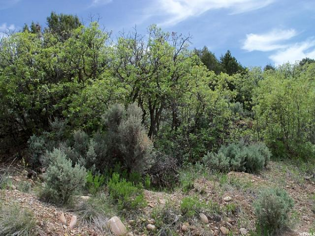 Additional photo for property listing at 45800 W 7500 S  Fruitland, Utah 84027 United States