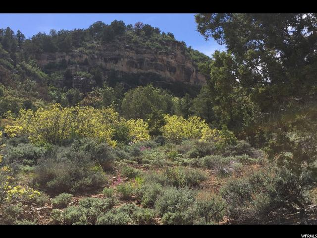 5 ACRES Y1 RD La Sal, UT 84530 - MLS #: 1435673