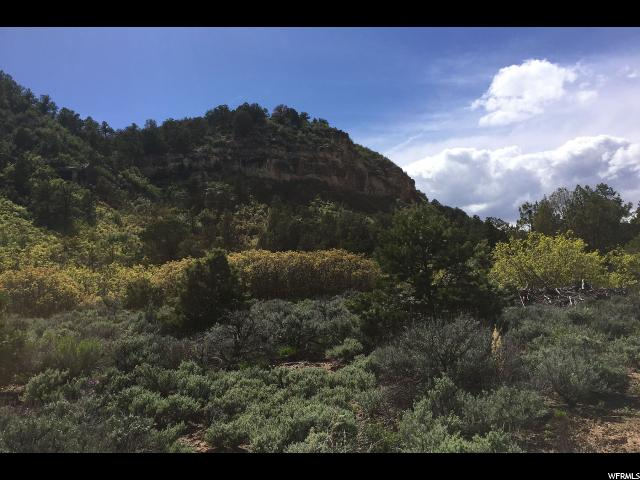 Additional photo for property listing at 5 ACRES Y1 Road  La Sal, Utah 84530 United States