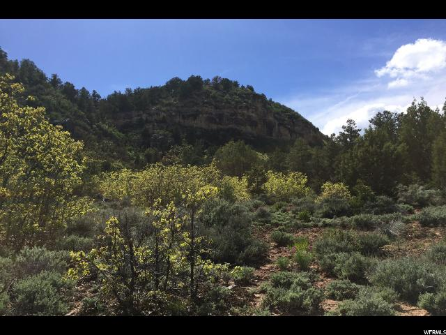 Additional photo for property listing at 18 ACRES Y1 Road 18 ACRES Y1 Road La Sal, Utah 84530 Estados Unidos