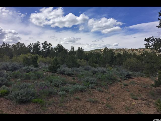 Land for Sale at 18 ACRES Y1 Road La Sal, Utah 84530 United States