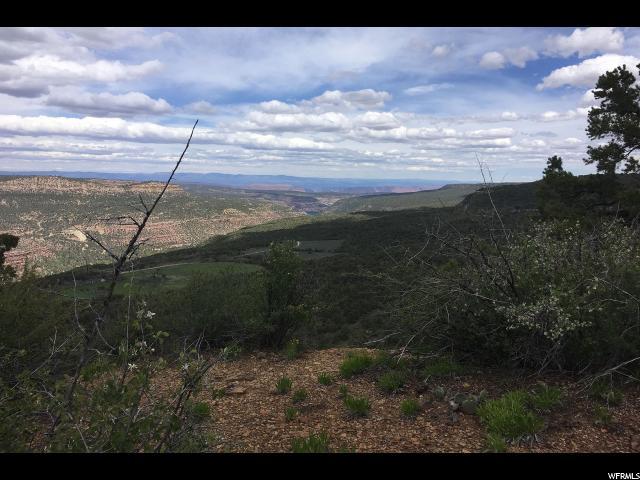 Additional photo for property listing at 50 E WRAY MESA Road 50 E WRAY MESA Road La Sal, Utah 84530 Estados Unidos