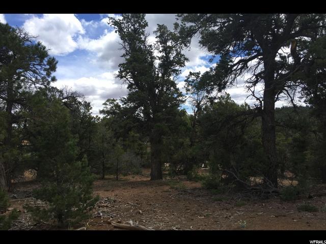 42 E WRAY MESA, La Sal, Utah 84530, ,Residential,recreational,For sale,WRAY MESA ,1435681