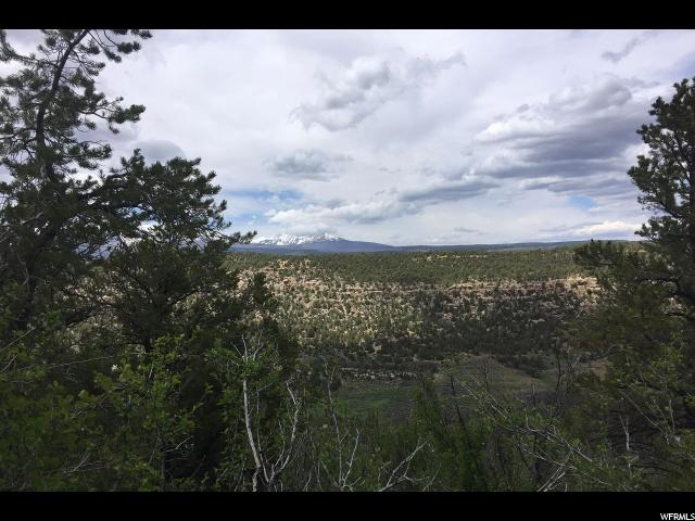 Additional photo for property listing at 77 S WRAY MESA Road  La Sal, Utah 84530 United States