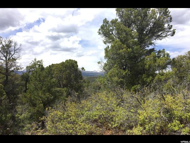 Additional photo for property listing at 79 S WRAY MESA Road  La Sal, Utah 84530 United States