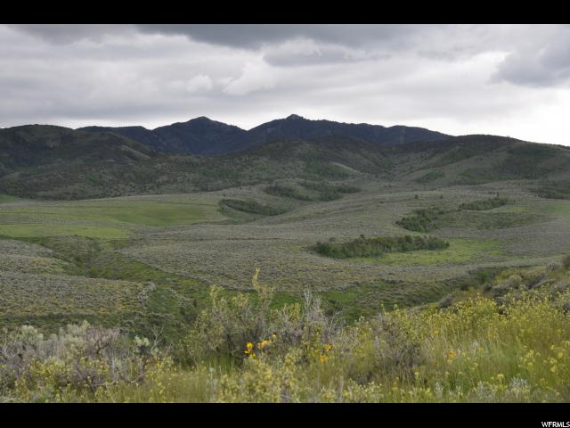 1168 acre farm with 401 acres range, and 767 in CRP. Offered for the first time since broken out of sagebrush, this farm is located on a mountain bench with fabulous mountain and valley vistas and bordering on BLM land. For decades successful dry grain crops and summer grazing were done here under Jim Capell, a leader in modern farming techniques. Now years in the CRP program have created a haven for big game animals and upland birds among its random thickets of trees and bushes. The property can be left in CRP, or with CRP contract buy-out may be returned to agricultural use. Capell's Rising Sun Farms also offers seclusion for a variety of 4 season recreation: hunting, hiking, horseback trails, camping or 4x4s and snowmobiling.  The potential is unparalleled.
