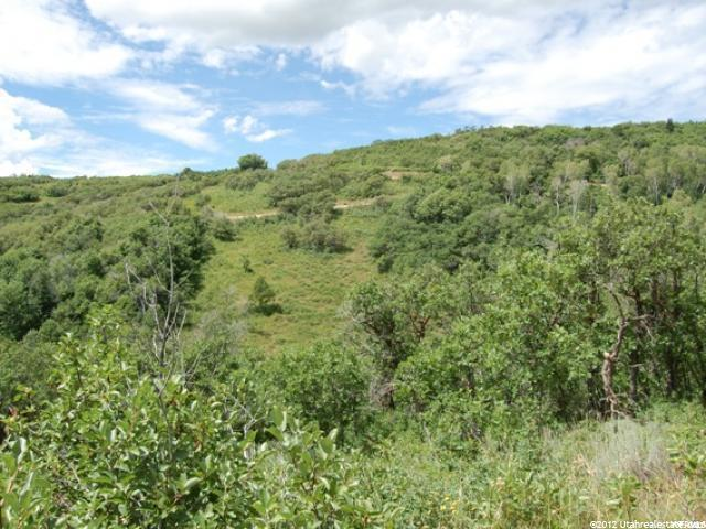 0 RED HAWK RIDGE RD Park City, UT 84098 - MLS #: 1437707