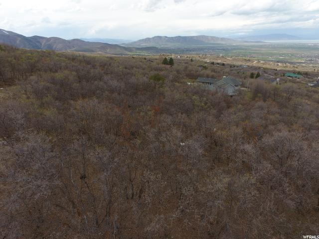 Additional photo for property listing at 895 S SKYLAKE Drive  Woodland Hills, Utah 84653 États-Unis