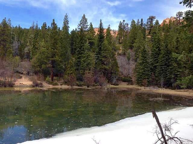 1 STRAWBERRY POINT 1687 ACRES Duck Creek Village, UT 84762 - MLS #: 1438317