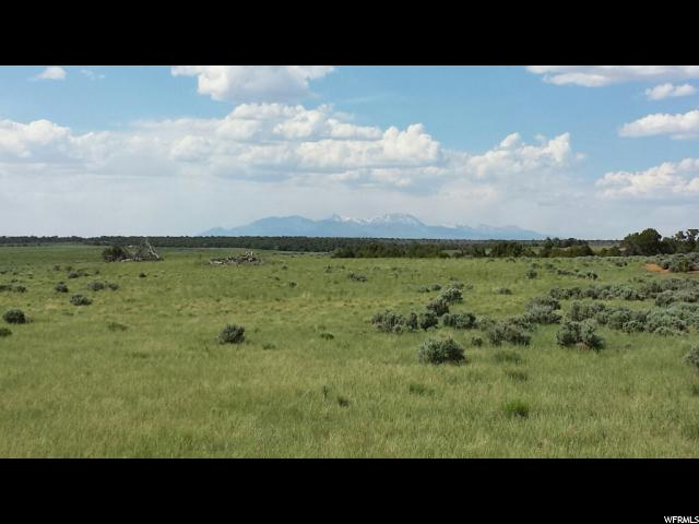 Farm / Ranch / Plantation for Rent at 32S26E225400 Monticello, Utah 84535 United States