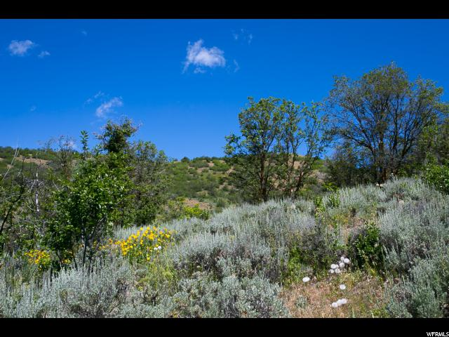 Additional photo for property listing at 9658 E KELLEY Drive 9658 E KELLEY Drive Huntsville, Utah 84317 États-Unis