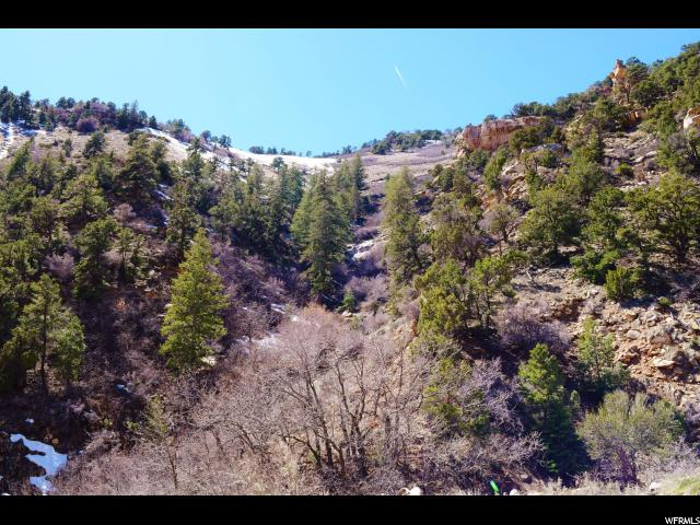 9890 SPRING CANYON RD Helper, UT 84526 - MLS #: 1439480