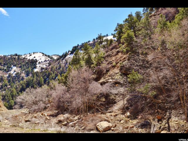 Additional photo for property listing at 9890 SPRING CANYON Road 9890 SPRING CANYON Road Helper, Utah 84526 United States