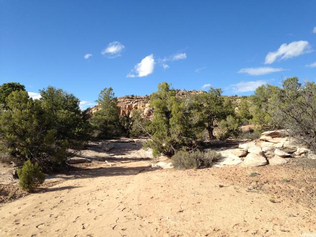 Additional photo for property listing at 174 S BRIDGER JACK Trail 174 S BRIDGER JACK Trail Moab, Utah 84532 États-Unis