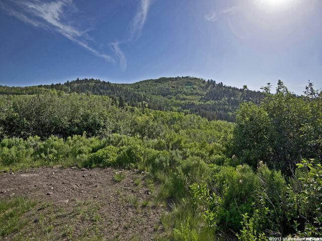 9836 E DEER CREEK DR Heber City, UT 84032 - MLS #: 1441081
