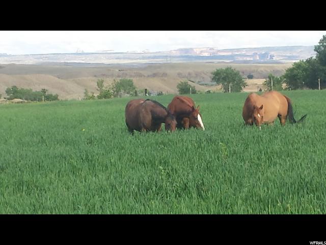 Ferme / Ranch / Plantation pour l à louer à 04-0048-0006, 600 600 Castle Dale, Utah 84513 États-Unis