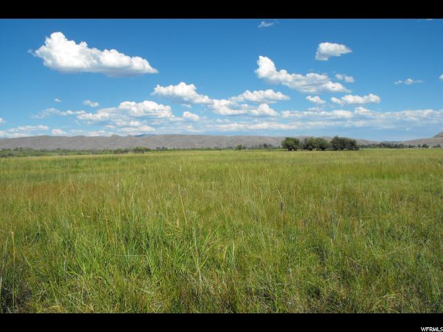 Land for Sale at 166 CENTER STREET Road Dingle, Idaho 83233 United States
