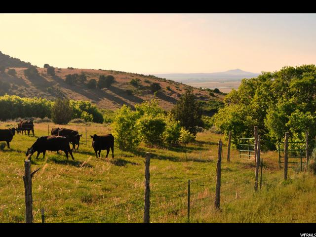 Farm / Ranch / Plantation for Rent at 671, 671 Fillmore, Utah 84631 United States