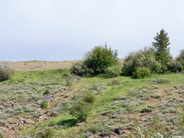 2951 PARIS CANYON RD Paris, ID 83261 - MLS #: 1442343