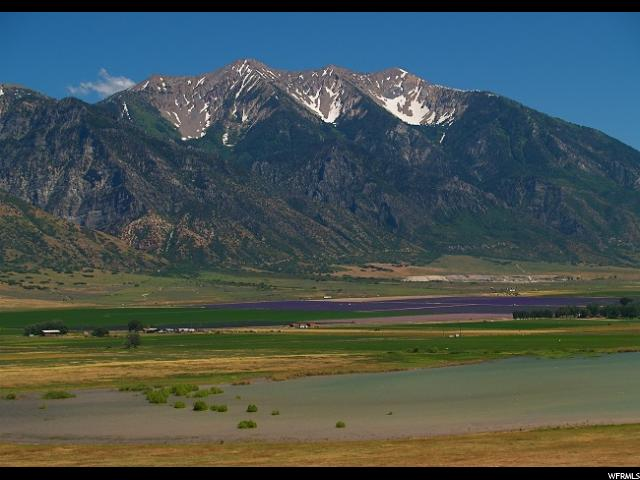 Land for Sale at 2000 N 2000 W Mona, Utah 84645 United States