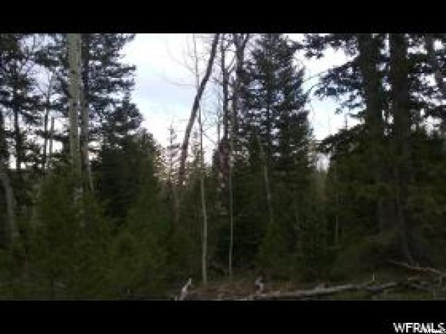 Additional photo for property listing at 100 STAUFFER CANYON Road  Georgetown, Idaho 83239 United States