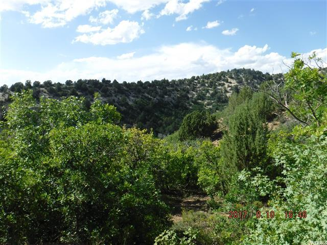 Land for Sale at 13085 E JUNIPER Drive 13085 E JUNIPER Drive Fairview, Utah 84629 United States