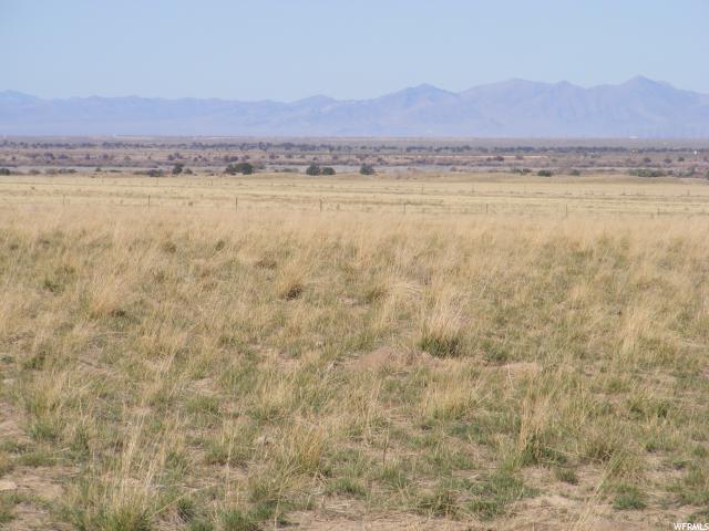 土地 为 销售 在 13600 S 200 W Eureka, 犹他州 84628 美国