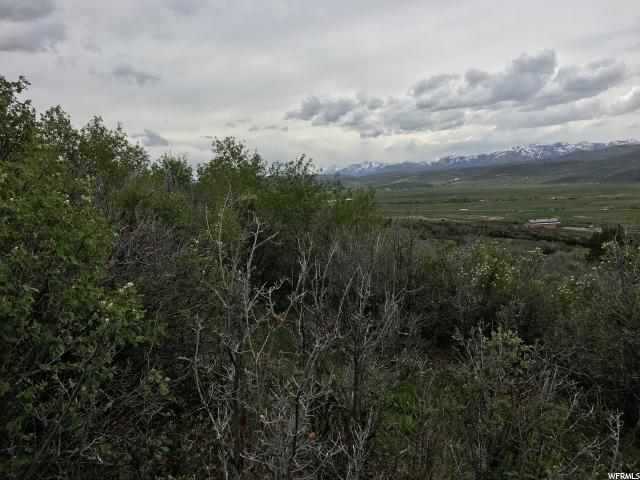 54 SPLENDOR VALLEY RD Kamas, UT 84036 - MLS #: 1444483
