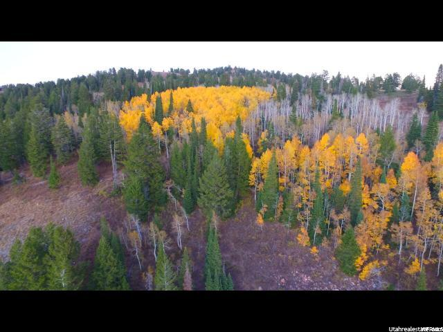 Additional photo for property listing at 5793 N POWDER MOUNTAIN Road 5793 N POWDER MOUNTAIN Road Eden, Utah 84310 États-Unis